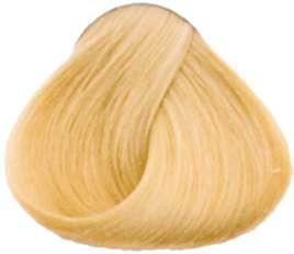 Goldwell Topchic Professional Hair Color (2.1 oz. tube)  10GB