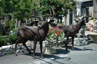 Jumbo Life size Bronze Whitetail Deer 12 Pt Buck