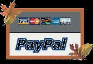 Utilizza PayPal per pagare con carta di credito o prepagata in tutta