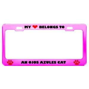 An Ojos Azules Cat Pet Pink Metal License Plate Frame Tag