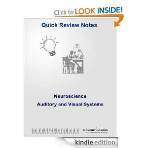 Neuroscience Review: The Auditory and Visual System (Quick Review