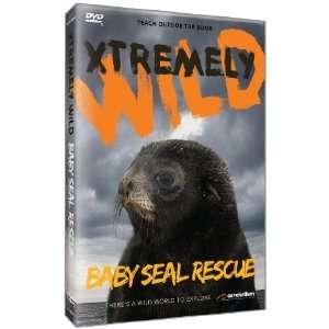 Baby Seal Rescue: Cerebellum Academic Team: Movies & TV