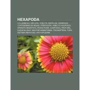 Aparato digestivo, Parasitoide (Spanish Edition) (9781231400258