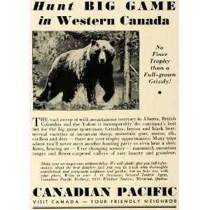 Railway Hunting Grizzly Bear   Original Print Ad