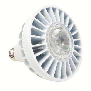 EcoSmart PAR38 18 Watt 75W LED Flood Light Bulb 672466009004