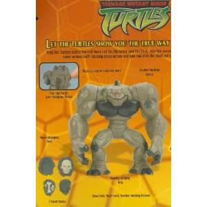 Teenage Mutant Ninja Turtles STONE BITER with BONUS DVD