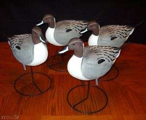 GHG FULL BODY PINTAIL DUCK DECOYS 4 DRAKES NEW 700905708260