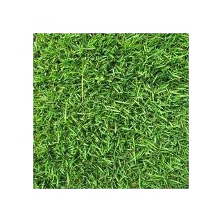 Scotts 18262 Turf Builder Zoysia Grass Seed and Mulch, 5