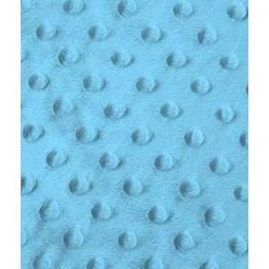 Turquoise Minky Dot Fabric: Arts, Crafts & Sewing