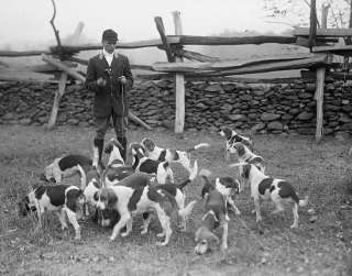 CLUB PHOTO 1914 RABBIT HUNTING AMERICAN KENNEL CLUB DOG BREEDERS