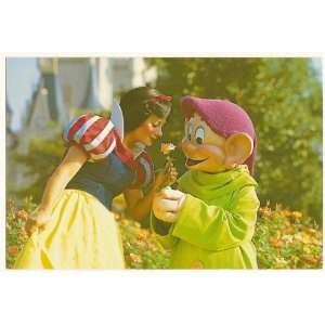 Walt Disney World Magic Kingdom Snow White and Dopey 4x6 Postcard Wdw