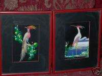 Antique 1952 Feather Bird Framed Art Pictures