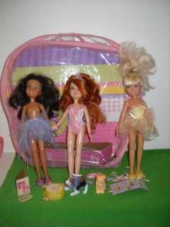 Barbie Wee Friends 3 Dolls Case Dogs Lot