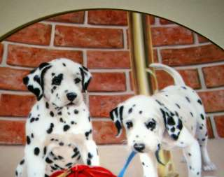 Linda Picken Dalmatians FIREHOUSE FROLIC Plate Bx+COA