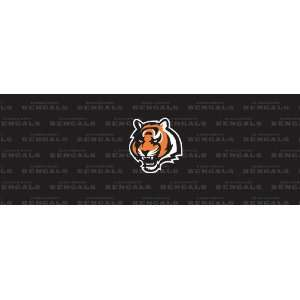 Cincinnati Bengals Team Auto Rear Window Decal: Sports