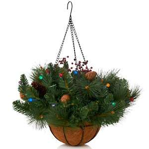 Winter Lane Indoor/Outdoor Battery Operated Lighted Hanging Basket at