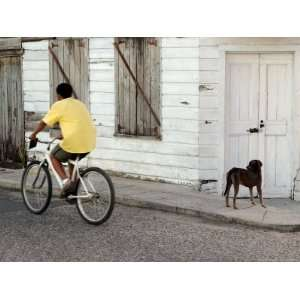 Boy Riding Bike in Front of House, with Stray Dog, Belize