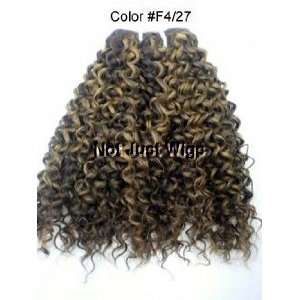 Jerry Curl   Enchantress   100% Human Hair Premium Blend   12   Color